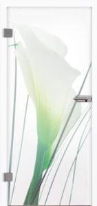 Glastür 9028 Flora Farbdruck