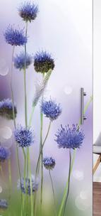 Glastür 9040 Flowers Farbdruck